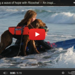 You Make Me More Than Proud. – Amazing Story of a Surfice (Service) Dog