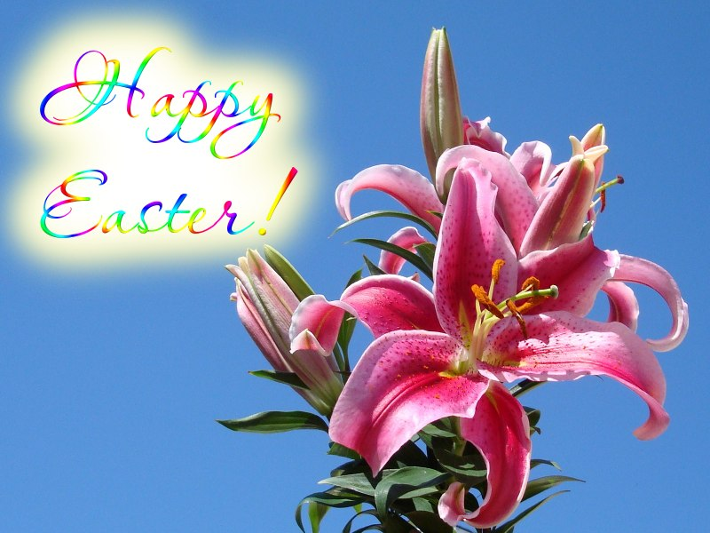 happy-easter-dsc03540 by fuzislippers.wordpress.com