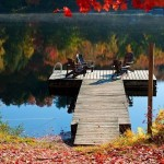 An Autumn Image to Brighten Your Day October 8