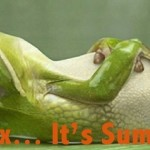 Blog the Frog!
