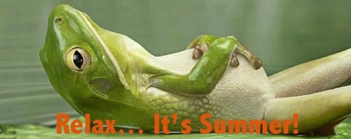 Frog Banner1
