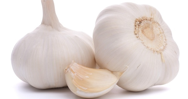 Garlic Cropped