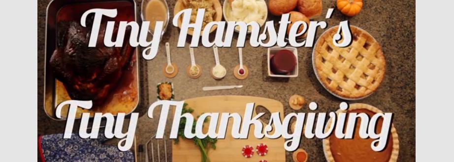 Tiny Hamster Thanksgiving Dinner