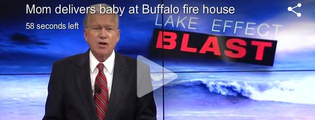 Buffalo Snow Storm Baby