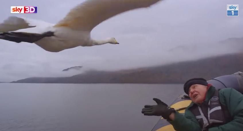 Swan and Sir David Attenborough