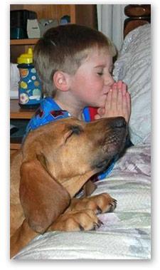 child-dog-praying
