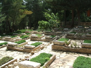 Elevated grass covered graves