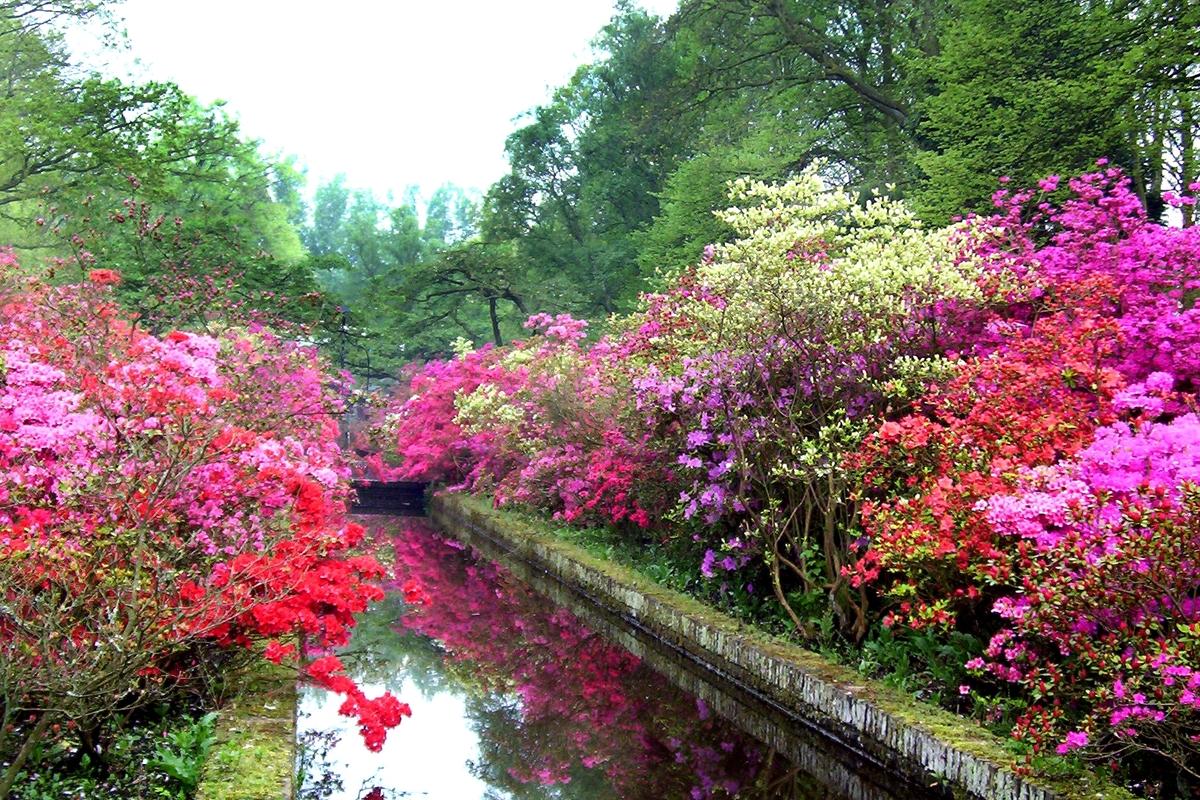 Reflecting-pool-Keukenhof-Gardens-Holland