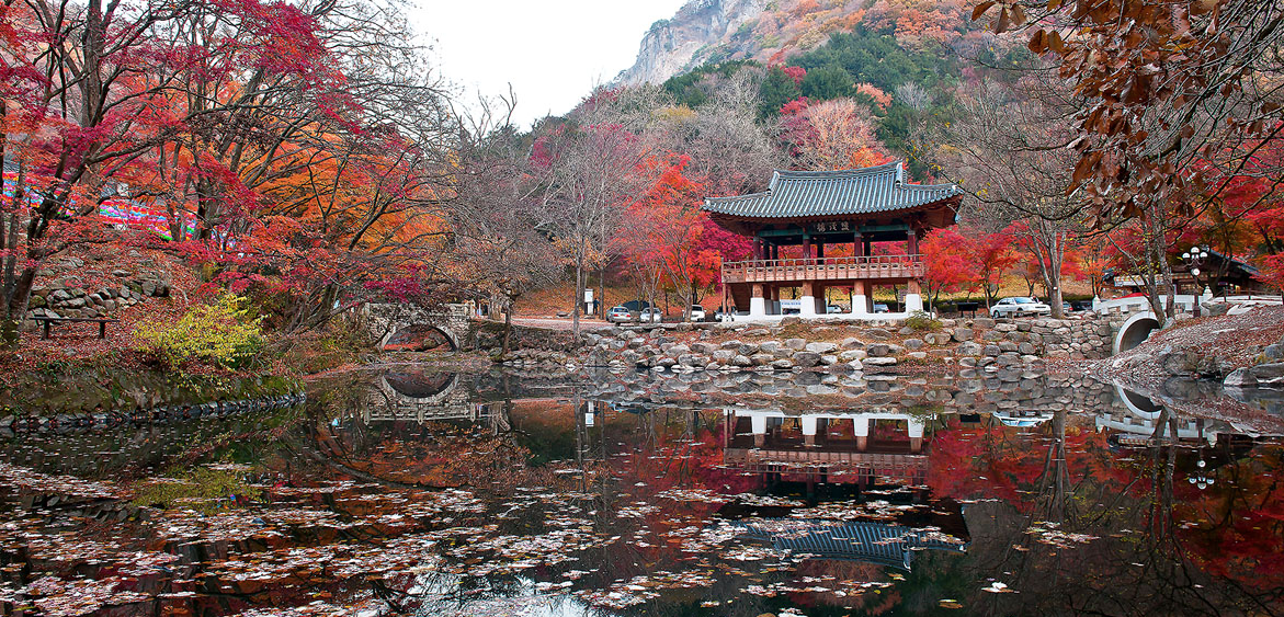 Autumn in South Korea by Gaviota Gallery